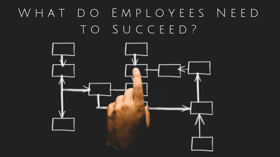Managers: What do your employees need to succeed?